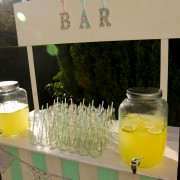bar à limonade - set champêtre